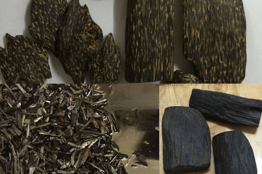 Công dụng của Trầm Hương trong Phong Thủy - Nhang trầm - trầm hương nguyên chất - Bảo Trầm